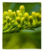 Green Dream Wandering Fleece Blanket