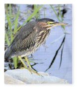 Green Heron 2 Fleece Blanket