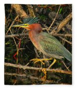 Green Heron Basking In Sunlight Fleece Blanket