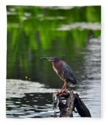 Green Heron Perch Fleece Blanket