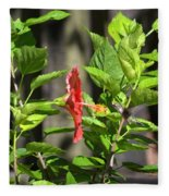 Green Hummingbird On Red Hibiscus Flower 2 Of 10 Fleece Blanket