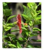Green Hummingbird On Red Hibiscus Flower 5 Of 10 Fleece Blanket
