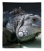 Green Iguana 1 Fleece Blanket