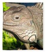 Green Iguana Face Fleece Blanket