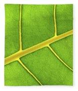 Green Leaf Close Up Fleece Blanket