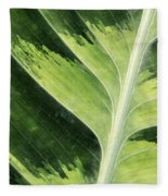 Green Leaf Fleece Blanket