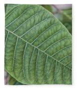 Green Leaf Macro Fleece Blanket