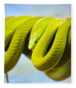 Green Mamba Coiled Up On A Branch Fleece Blanket