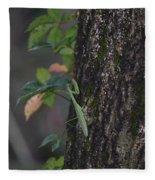 Green Mantis Fleece Blanket