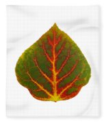 Green Red And Yellow Aspen Leaf 4 Fleece Blanket