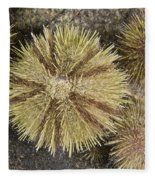 Green Sea Urchins Fleece Blanket