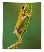 Green Tree Frog Climbing Fleece Blanket