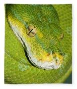 Green Tree Python #2 Fleece Blanket
