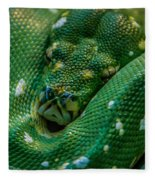 green tree python Macro Fleece Blanket