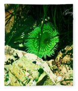 Green Urchin Fleece Blanket