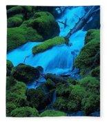 Green Velvet Moss Fleece Blanket