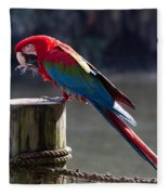 Green-winged Macaw Fleece Blanket