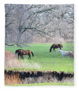 Greener Pastures Fleece Blanket