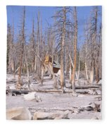 Lonely Cabin Fleece Blanket
