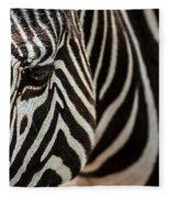 Grevy's Zebra 4 Fleece Blanket