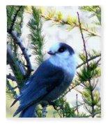 Grey Jay Watching - Oob Fleece Blanket