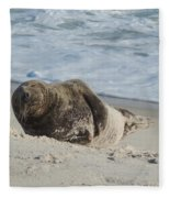 Grey Seal Pup On Beach Fleece Blanket