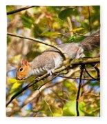 Grey Squirrel - Impressions Fleece Blanket