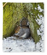 Grey Squirrel With Its Food Store Fleece Blanket