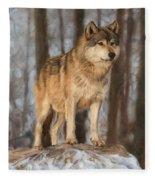 Grey Wolf Fleece Blanket by David Stribbling