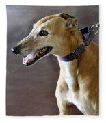 Greyhound Dog Fleece Blanket
