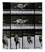Greyhound Running Fleece Blanket