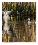 Greylag Goose Family Fleece Blanket