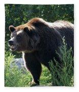 Grizzly-7756 Fleece Blanket