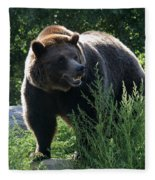 Grizzly-7759 Fleece Blanket