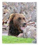 Grizzly Bear 02 Postcard Fleece Blanket