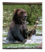 Grizzly Bear 08 Fleece Blanket