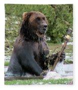 Grizzly Bear 6 Fleece Blanket