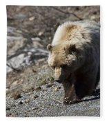 Grizzly By The Road Fleece Blanket