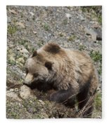 Grizzly Digging Fleece Blanket