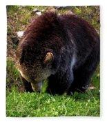 Grizzly Grazing Fleece Blanket