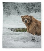Grizzly Stare Fleece Blanket