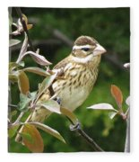 Grosbeak Fleece Blanket