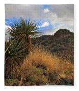 Grosvenor Hill Arizona Fleece Blanket
