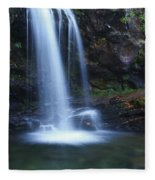 Grotto Falls Great Smoky Mountains Fleece Blanket