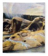 Grotto Geyser Yellowstone Np 1928 Fleece Blanket