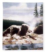 Grotto Geyser Yellowstone Np Fleece Blanket
