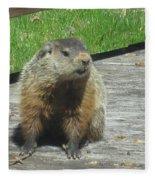 Groundhog Holding A Stick Fleece Blanket