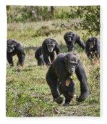 group of Common Chimpanzees running Fleece Blanket