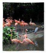 Group Of Flamingos And Lone Heron In Water Fleece Blanket