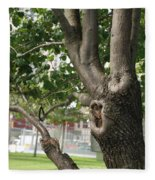 Growth On The Survivor Tree Fleece Blanket